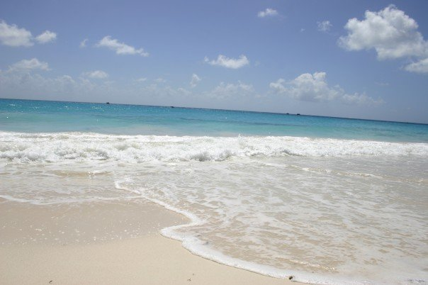 (photo from a wedding trip to Barbados in Feb07)